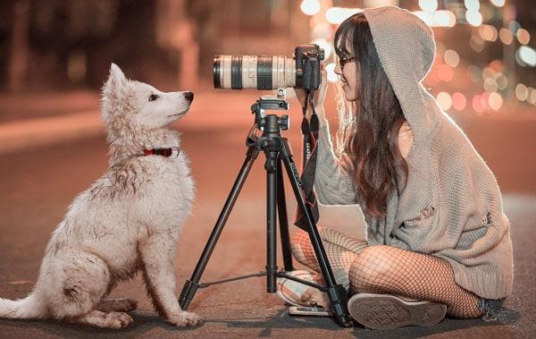 Ønsker du at være freelance eller selvstændig fotograf? Få tips her
